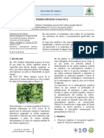 Informe 4. Embriogénesis somática