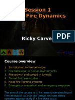 Tunnel Course Session 1 2019 - Basic Fire Dynamics.pdf