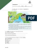 ncsi5_diagnostico (2).doc