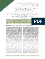 2015-09-01-Romero-Soler-Cetzal-Ix (2).pdf