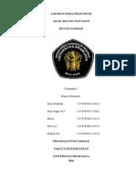 342687325-Botani-Farmasi-Kelompok-3 - Copy.docx