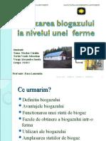 Proiect Fizica-Biogazul