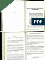 Texto_SRI.pdf