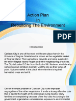 Action Plan in MST