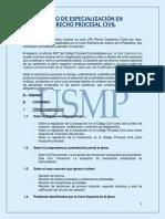 USMP_Plenos_Casatorios_Civiles