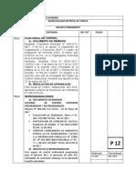 P ARCHIVOS DE AUDITORIA avance.docx