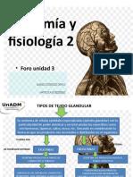 AFI2_U3_FORO_MARZ.pptx