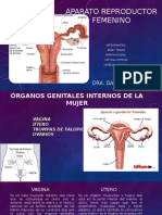 282773147-APARATO-REPRODUCTOR-FEMENINO.pptx