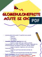 Glomerulonefrite Acute, Cronice