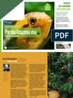 Amazon Newsletter 7 Esp[1]