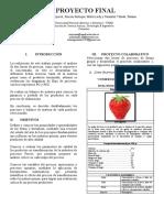 PASO 5 procesos de fruver