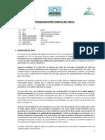 PROGRAMACIÓN CURRICULAR ANUAL-1º-2020 (1)