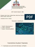 apresentação final(sífilis).pptx