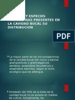 GENEROS Y ESPECIES MICROBIANAS PRESENTES EN LA CAVIDAD