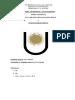 TRABAJO PRACTICO n° 1.doc
