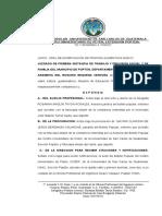 DEMANDA ORAL AUMENTO.docx