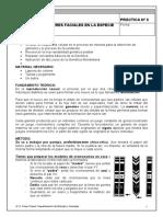 (Microsoft Word - geneticaclasica.doc).pdf