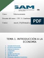 MICROECONOMIA.pptx