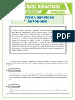 El-Sistema-Nervioso-Autónomo-para-Tercero-de-Secundaria