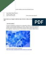 SOLUCIÓN TALLER CORRELACIÓN DE MICROBIOLOGÍA.docx