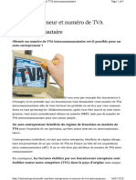 Auto Entrepreneur & N° de TVA Intracommunautaire