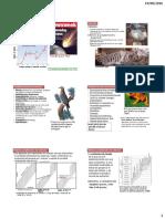 6 Extinciones masivas.pdf