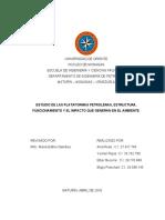 Informe Plataformas