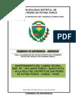 005-T-d-R-MDPP-Py-Exp-Tecnico-Carretera-Villarica.doc