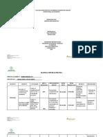 FORMATO  PLAN DE ACCION DE LA PRACTICA  ICBF  CENTRO ZONA SUR OCCIDENTE FINAL 2020