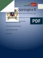 Ensayo_Quirurgica_II.docx