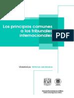Principios Tribunales internacionales.pdf