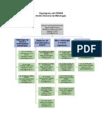 Organigrama del CENAM (1).docx