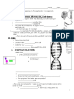 DNA_student Notes.docx