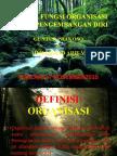 Peran & Fungsi Organisasi Dalam Pengembangan Diri.ppt.2010