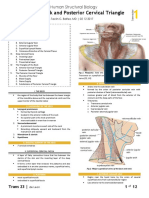 GROSS - 1S23 - Neck and Posterior Cervical Triangle.pdf