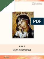 Caderno_de_Orientacoes_e_Texto_Aula_2_-_Introducao