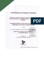 Tesis_Rodríguez Hernández Obdulia.pdf