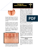 T2.-Genital-femenino-Cobar.pdf