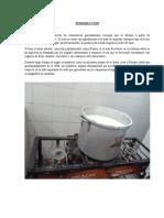 INFORME DE YOGUR  DE TOÑO.docx