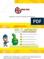 SEGURIDAD_VIAL_-_PHVA_PERU