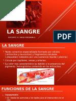 LA SANGRE.pptx