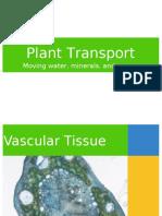 Plant-Nutrient-Transport