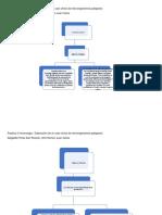 Practica 3 caso clinico de microorganismos patogenos