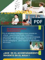 acompañmiento pedagogico 2016