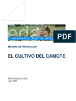 EDA_Manual_Produccion_Camote_07_07