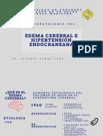 CLASE EDEMA CEREBRAL EERC