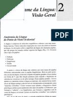 2 - Exame da Língua_ Visão Geral (págs 13-22)