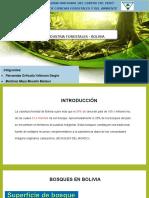 INDUSTRIAS_I_BOLIVIA