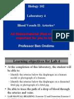 Laboratory 4 _Blood Vessels II Arteries
