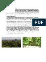 RECURSOS DE PETEN.docx
